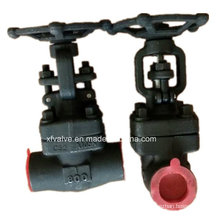 API602 Forged Carbon Steel A105 Thread End NPT Globe Valve